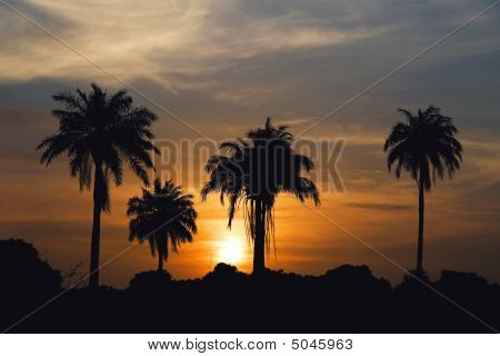 Gambia Sunrise