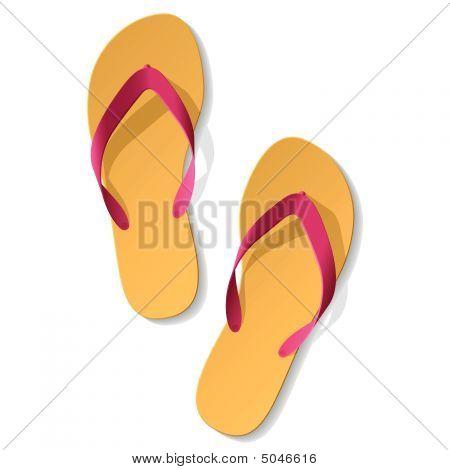 Flip-flop. Vector.