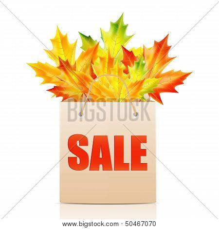 Paper Shopping Bag With The Word Sale Decorated With Autumn Maple Leaves.shopping Bag Isolated On Wh