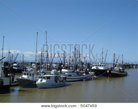Commercial Fishing Fleet
