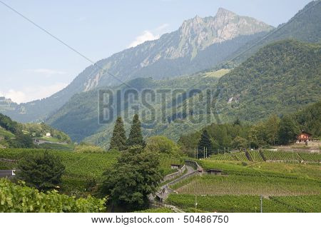 A Beautiful Swiss Countryside