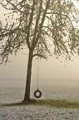 image of tire swing  - A tire swing hangs on a tree following a low elevation snow storm near Roseburg Oregon