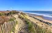 picture of dune grass  - Footpath between wooden fences on the Atlantic Dune in Brittany in north - JPG