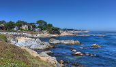 Pacific Grove View
