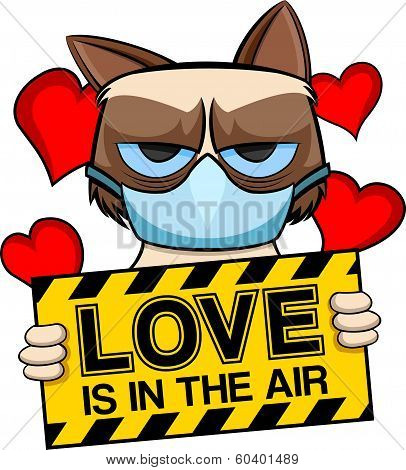Grumpy cat love is in the air