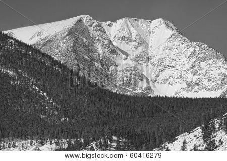 Colorado Ypsilon Mountain Rocky Mountain National Park