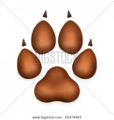 Dog paw, vector