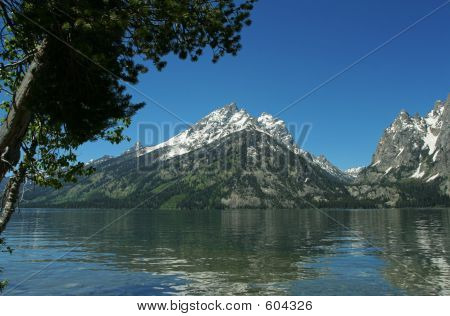 Jenny Lake Reflection