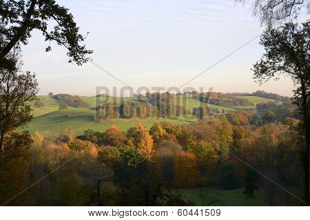 Autumn Colors In The Surrey Hills. England