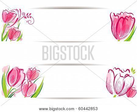 Set of tulips background