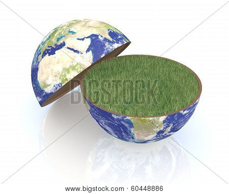 Concept Of Environmental Conservation