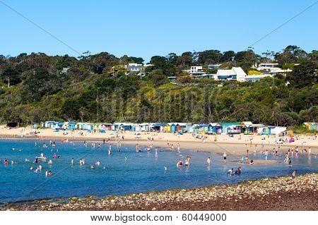 Mills Beach in Mornington