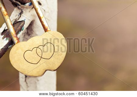 Lock In The Shape Of Of Two Hearts