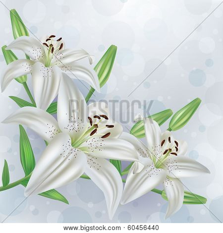 Stylish Floral Background With Bouquet Of Flowers Lilies