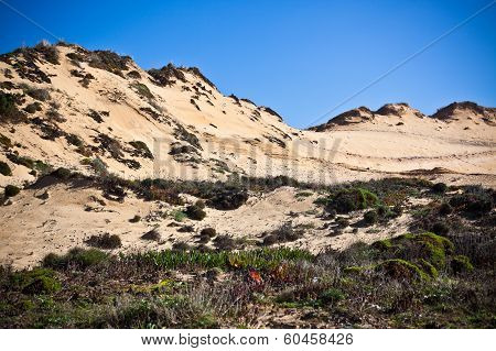 Dunes At The Ocean Beach In Portugal