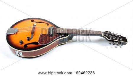 mandolin in country style