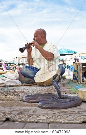 MARRAKESH, MOROCCO - OCTOBER 23, 2013: Snake charmer cobra dancing at famous Marrakesh square Djemaa el Fna