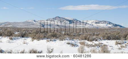 Juniper Butte Panorama