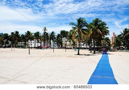 Blue Carpet in South Beach