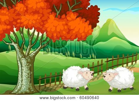 Illustration of the two sheeps under the tree