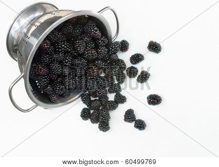 Colander with Spilled Blackberries