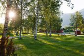 stock photo of birching  - Sunset in camping - JPG