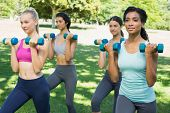 Confident multiethnic sporty women lifting weoghts in park