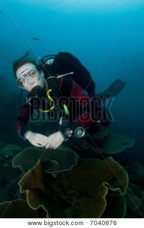 Woman Scuba Diver Swimming In Clear Blue Water