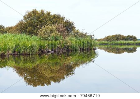 Scenic Of Briere Marsh In Summer Day, France