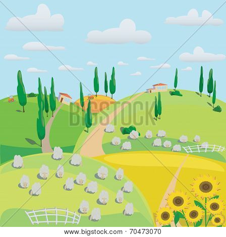 Landscape Of Meadows, Sheep And Harvesting Crops