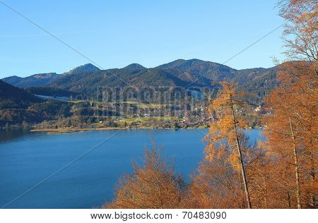 View To Lake Tegernsee, Edge Of The Wood With Autumnal Larch Trees