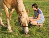 stock photo of horses eating  - Girl and her horse  - JPG