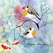 pic of robin bird  - robins bird on a branch on a watercolor background - JPG