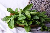 foto of sorrel  - Fresh sorrel in round wicker basket on napkin closeup - JPG