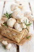 pic of crimini mushroom  - Fresh Champignons In Basket With Rosemary Leaves - JPG