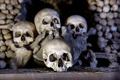 stock photo of eye-sockets  - Human skulls in the basement crypt - JPG