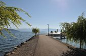 picture of sate  - View along Sanpoint - JPG