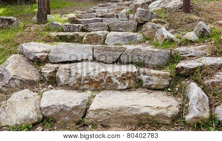 Outdoor Stone Steps With Green Grass Pine Needles