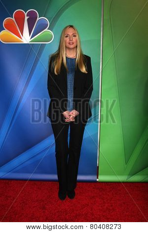 LOS ANGELES - DEC 16:  Hope Davis at the NBCUniversal TCA Press Tour at the Huntington Langham Hotel on December 16, 2015 in Pasadena, CA