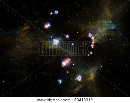 The Flower Of Stars