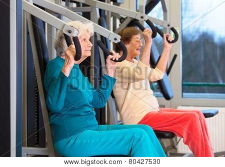 Healthy Elderly Ladies In Chest Press Exercise