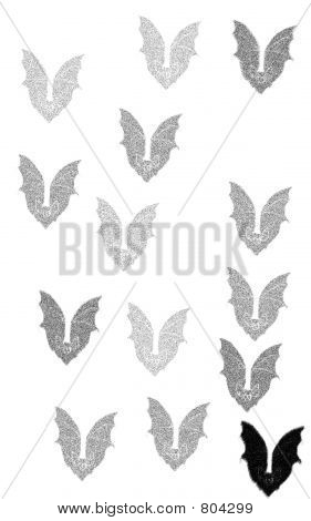 Shades of bats
