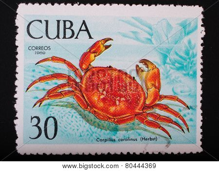 Cuba - Circa 1969: Postage Stamp Printed In Cuba Shows A Color Image Underwater Creatures Crab Coral