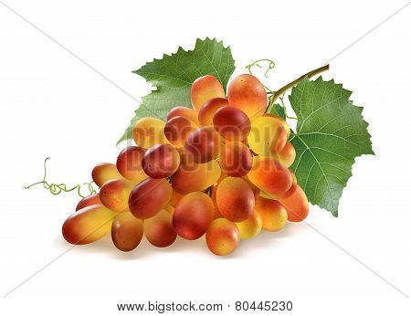 Shiny Red Grapes Bunch And Leaves Isolated On White