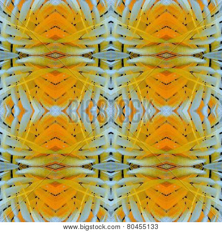 Exotic Of Pale Yellow And White Background Textured From Butterfly Wing Skin