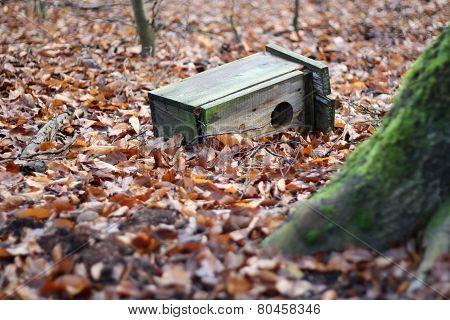 destroyed birdhouse