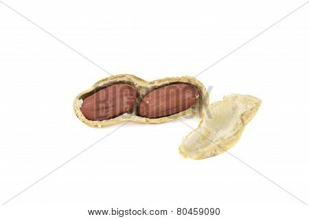 Peanut In Shell Isolated Over White