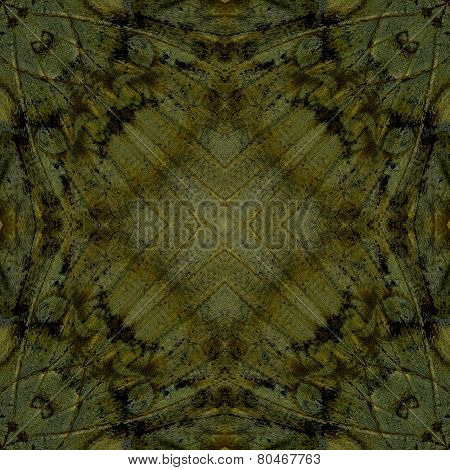 Great Background Pattern Made Of Great Marquis Butterfly Wing Skin Texture