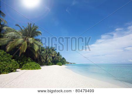 Ocean shore landscape, Kuramathi island
