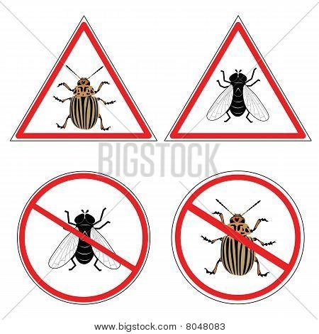 fly and  colorado potato beetle